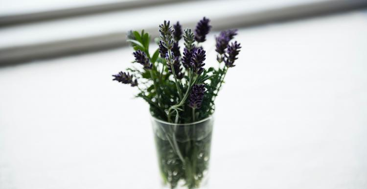 Lavender in a glass