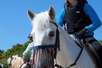 4Sight image of girl on horse
